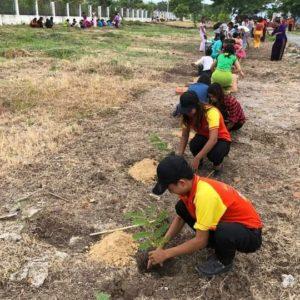 Planting-Activities _04